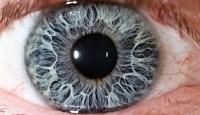 Gözlük ve Lens Kullanımı