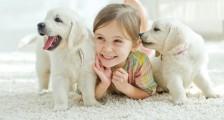 Çocuklara Doğa ve Hayvan Sevgisi Nasıl Öğretilir?