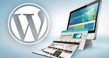 WordPress Eğitimi Hakkında Bilgiler