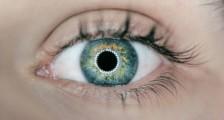 Göz İzleme Teknolojisi Nedir?